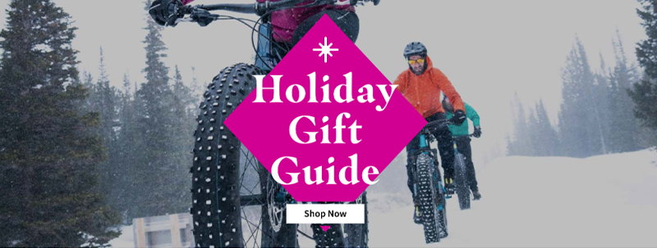 SE-EMAIL-DecMarketingUpdate20-holiday-gift-guide