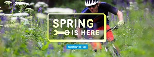 SE_BLOG_AprilLibraryUpdate20-spring-service