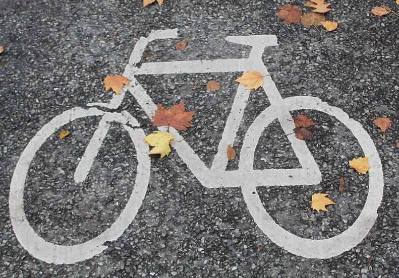 bicycle-path-491313_960_720.jpg